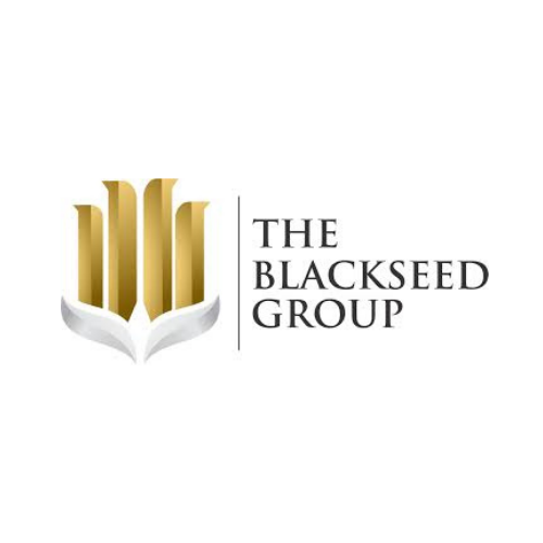 Blackseed Group Logo Asset for MoneyMadu.com